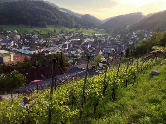 Himmelluepfer_Dielenberg_Oberdorf_BL_2