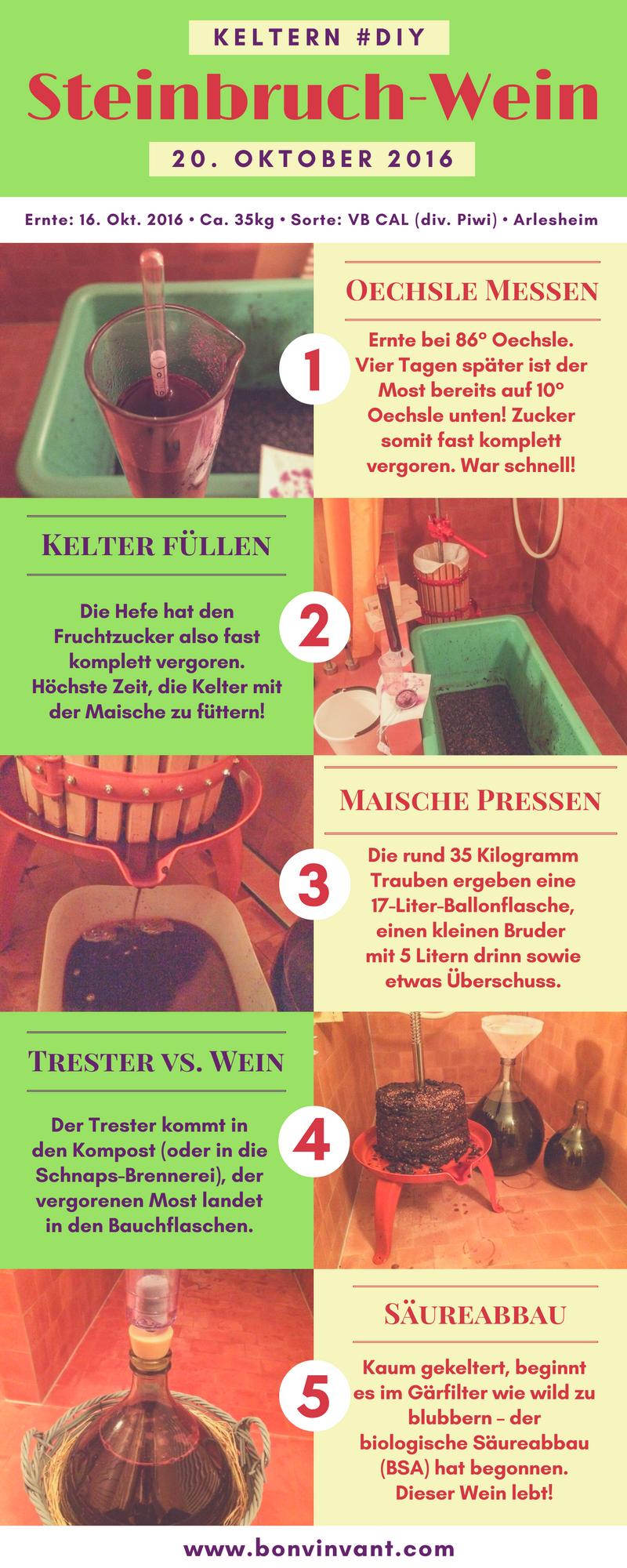 161020_steinbruch-wein_keltern_grafik