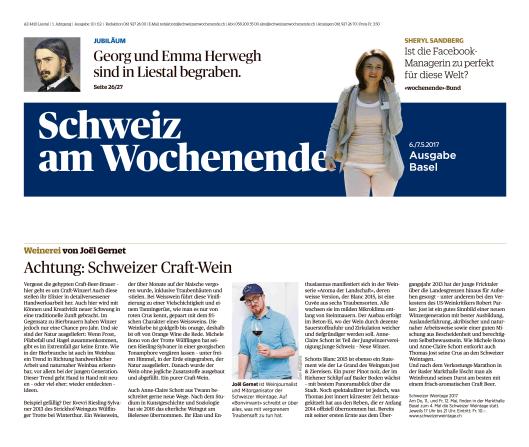 170506_Joel_Gernet_Kolumne_Schweiz-am-Wochenende_Craft-Wein_1x1_edit
