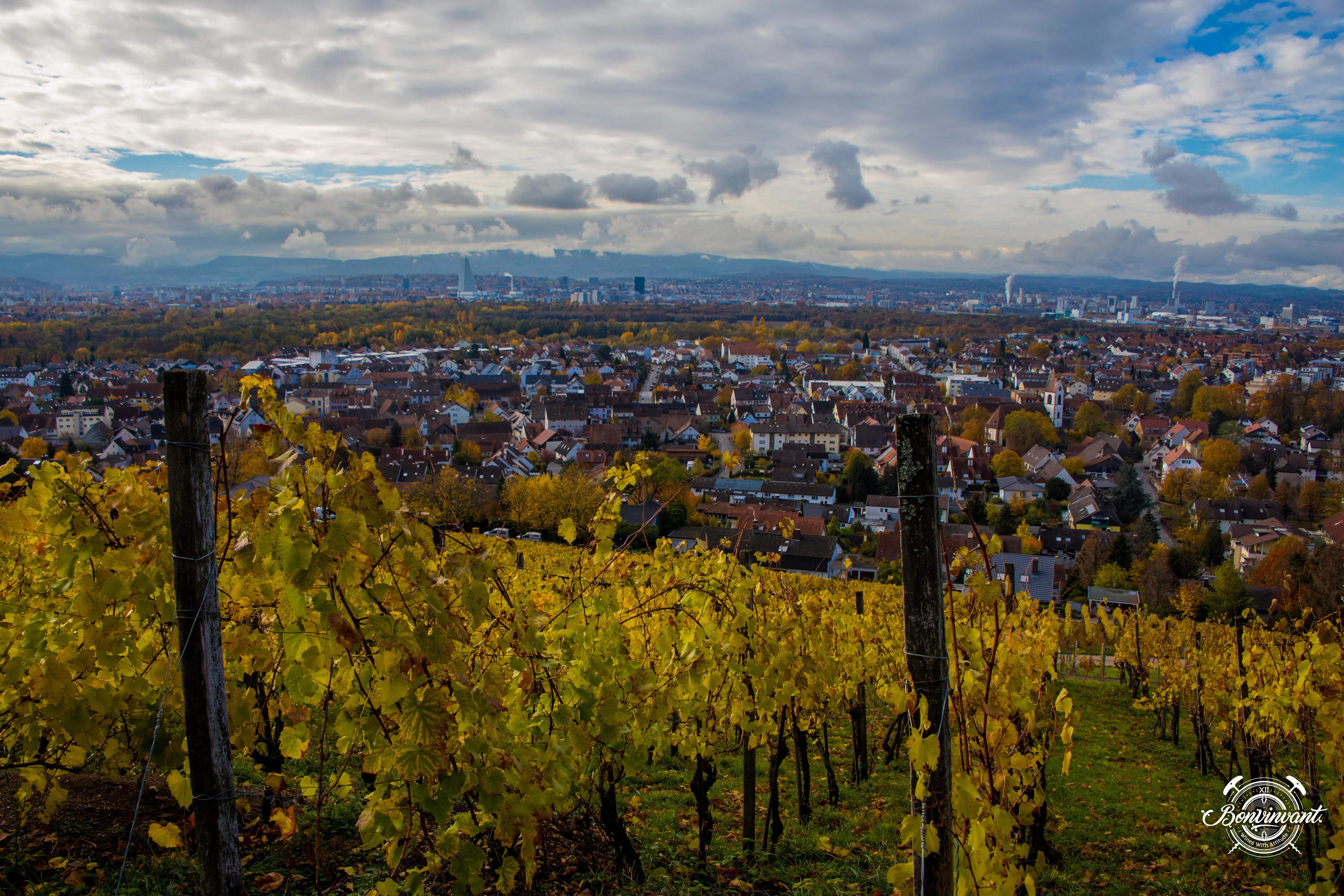 Weiler_Schlipf_08.11.2018_BVNT_web-13
